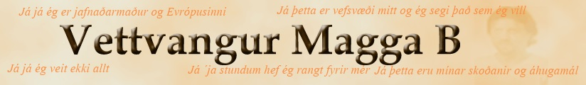 Vettvangur Magga - Hausmynd